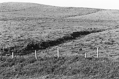 Cliff of Moher 10 (Ian Atrus Gazzotti  iangazzotti.com) Tags: ireland blackandwhite bw monochrome field analog 35mm fence nikon cliffs bn moher biancoenero irlanda scogliere f70