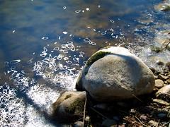 misc16bo-193 (Mark Koennecke) Tags: river misc limmat 2016 longexp