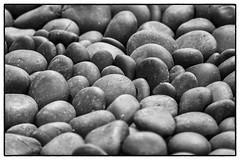 Stones (Scott DeSelle) Tags: stone canon portland japanesegarden acratech reallyrightstuff rrs eos7dmarkii