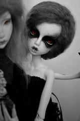 Black Swan & Red Eyes (junjun_niki) Tags: bw white bird girl ball doll skin nb isabel 111 bjd ninon msd jabberwocky jointed jubjub kbody cerisedolls dollchateau