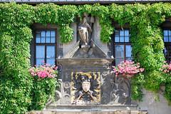 112_6333 Eingang vom Quedlinburger Rathaus, die Fassade ist mit Kletterpflanzen bewachsen - das zweigeschossige gotische Gebude ist eines der ltesten Rathuser Mitteldeutschlands. ber dem Eingangsportal befindet sich als Brustschild eines schwarzen Rei (stadt + land) Tags: deutschland foto eingang heinrich unesco architektur portal rathaus gebude bilder harz fassade reise weltkulturerbe denkmal hansestadt knig gotisch stadtwappen quedlinburg sule sehenswrdigkeiten gttin reichsadler sachsenanhalt landkreis rmische bewachsen eingangsportal schwarzer berfluss ltestes kletterpflanzen rathuser stdtebund abundantia zweigeschossig knigspfalz flchendenkmal niederschsischer welterbestadt brustschild quedlinburger mitteldeutschlands hansebund unescoliste krnend