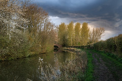 Dark cloud over Wistow (Noel Wyn Davies) Tags: uk bridge trees cloud dark canal spring blossom leicestershire path ominous wistow