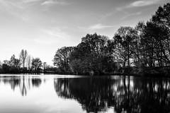 (Nico_1962) Tags: leica bw reflection 35mm meer zwartwit nederland thenetherlands wolken lucht overijssel landschap weerspiegeling summarit m240 leicam
