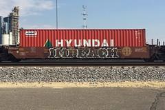 Impeach (Psychedelic Wardad) Tags: graffiti alb freight amfm impeach mpeach benching d2f