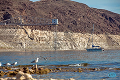 0424 IMG_7110 (JRmanNn) Tags: water lasvegas level lakemead bouldercity