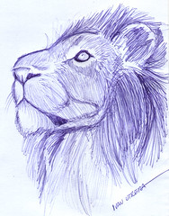 len a lapicero (ivanutrera) Tags: wild animal pen sketch drawing wildlife lion leon draw dibujo lapicero boligrafo dibujoalapicero dibujoenboligrafo