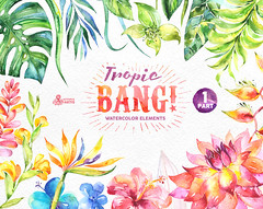 Tropic Bang Elements part 1. Watercolor clipart, lily, hibiscus, orchids, wedding invitation, floral, beach, greetings, diy clip art (octopusartis) Tags: flowers wedding art beach floral digital watercolor hawaii diy orchids clip invitation elements frame clipart watercolour