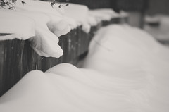 Snow Drift (flashfix) Tags: blackandwhite snow ontario canada monochrome nikon ottawa snowing flakes slope drift 2016 d7000 nikond7000 55mm300mm 2016inphotos february092016