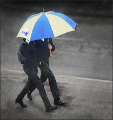 In Step with BT (rogermccallum) Tags: street rain umbrella walking bt brolly britishtelecom schoolboys rainingweather