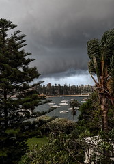 62+175: Storm front, Manly, 30/01/16 (geemuses) Tags: storm rain weather hail manly nsw sydneyharbour wildweather manlycove strongwinds thudnerstorm