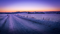 Winter Landscape (daniel_munch) Tags: trees winter sunset sky snow ice nature colors silhouette landscape denmark dusk path abigfave