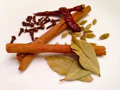 Spicy 20160208 (Abhiks) Tags: bay leaf cinnamon indian spices mace clove cardamom