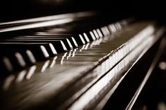 Will Never Be Able 31/366 (Watermarq Design) Tags: monochrome lowlight moody bokeh piano lightandshadow lightanddark leadinglines project366 lightinspired