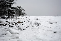 Snowy shore of Kuningatar (Kallahti, Helsinki, 20160110) (RainoL) Tags: winter snow cold finland geotagged helsinki january helsingfors fin seashore vuosaari 2016 uusimaa nyland kallahti kallahdenniemi kuningatar kallvik 201601 drottningen nordsj kallviksudden 20160110 geo:lat=6018364333 geo:lon=2515194557
