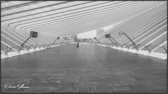 Station Liège-Guillemins, (<<<< peter ijdema >>>>) Tags: luikguillemins stationliègeguillemins