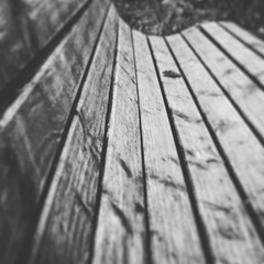 Before the Break (stefan_wolpert) Tags: blackandwhite closeup bench photography conceptual bnw blackandwhitephotography swabianjura