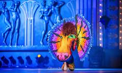 MarcosBPhoto_Carnaval2016_BodyMakeup_098 (Marcos Bolaños Photography) Tags: carnival girls art boys grancanaria body makeup canarias bodypaint carnaval canaryislands laspalmasdegrancanaria