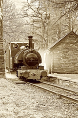 TR 44109bwtone (kgvuk) Tags: station trains railwaystation locomotive railways tr steamlocomotive northwales talyllyn narrowgaugerailway dolgoch talyllynrailway 042st dolgochfallsrailwaystation