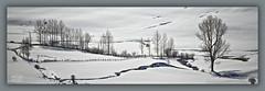 Sin título/ No title (Jose Antonio. 62) Tags: trees españa white snow blanco beautiful photography spain arboles nieve león