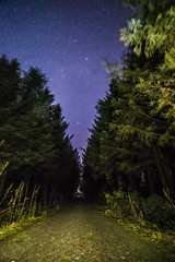 Starry night (aronaled) Tags: trees sky wales night forest stars path space north cymru nightshoot clear astrophotography astronomy northwales astrometrydotnet:status=failed astrometrydotnet:id=nova1478119