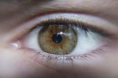 Clear Vision (socialscott) Tags: brown white macro eye clear human hazel sight