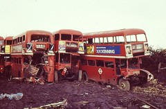 3 FORMER LONDON ROUTEMASTERS ARE SEEN IN TREVOR WIGLEY'S CARLTON YARD ON 3 MARCH 1987. MIDDLE IS RM2044 ALM44B, RIGHT IS RM157 VLT157 (47413PART2) Tags: rm157 rm2044 scrapyard bus