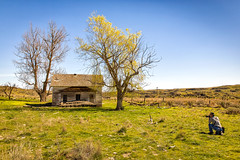 At the End of the Trail (KPortin) Tags: trees abandoned photographer abandonedhouse wilbur lincolncounty
