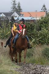 IMG_EOS 7D Mark II201604039678 (David F-I) Tags: horse equestrian horseback horseriding trailriding trailride ctr tehapua watrc wellingtonareatrailridingclub competitivetrailriding sporthorse equestriansport competitivetrailride april2016 tehapua2016 tehapuaapril2016 watrctehapuaapril2016
