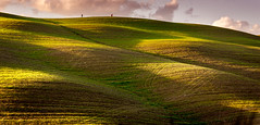 Photographers on the hills (WaSz-Fotograf) Tags: light italy mountain green nature beautiful beauty field grass clouds garden landscape countryside italian colorful europe pattern bright outdoor farm background country hill grow meadow farmland fresh pasture tuscany land 500px ifttt