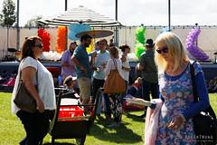 20160313-01-MONA Market mardi gras theme (Roger T Wong) Tags: people grass market lawn australia mona moma tasmania hobart mardigras stalls 2016 canonef24105mmf4lisusm canon24105 canoneos6d museumofoldandnewart rogertwong