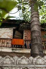 (Steve.Bernacki) Tags: orange cambodia monk phnom penh