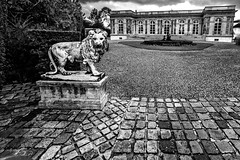 Le lion aux pavs (Lucille-bs) Tags: bw sculpture france architecture europe lion nb fontaine iledefrance cour pav yvelines levsinet grandangle palaisrose