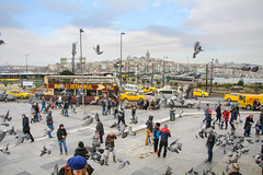 Galata Bridge / Galata Kprs, Istanbul (taipan_pl) Tags: bridge winter turkey pigeons trkiye istanbul most galata constantinople byzantium kprs stanbul