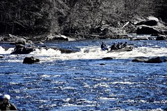 #Desi boys join a crew and go #WhiteWaterRafting  #IG_Color #AGameOfTones #MooseRiver  #Adirondacks  #HighAdventure #thrilling #IG_NorthEast #IG_NorthAmerica  #IG_UnitedStates  #WhiteWater #rafting #LiveAuthentic #WeLiveToExplore #adventurers #travel #tra (faisal_halim) Tags: travel sports nature water whitewater adirondacks rapids traveller artsy rafting desi extremesports watersports adrenaline whitewaterrafting nikonphotos adventurers thrilling highadventure mooseriver natureporn adrenalinesports travelgram ignorthamerica liveauthentic igunitedstates agameoftones welivetoexplore igcolor ignortheast