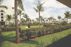 The Finest (Deganizer) Tags: mexico playa resort mujeres finest the