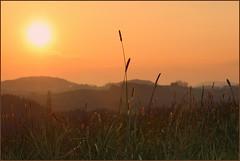 Sonnenuntergang  IMG_2980 (pappleany) Tags: sunset backlight bavaria evening abend sonnenuntergang outdoor natur gegenlicht grser bayerischerwald pappleany atzldorf