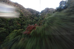 Ropeway ride (Elios.k) Tags: camera travel november autumn trees red vacation sky mountain motion blur color colour travelling green japan horizontal forest canon outdoors photography movement asia ride over buddhism cable nopeople miyajima climbing motionblur transportation cablecar sanyo gondola shinto slope ropeway itsukushima misen hiroshimaprefecture 2015 shingon itsukushimaisland holymountain mtmisen misensan chugoku circulating momijidani chūgoku 5dmkii sanyō kayatani
