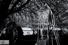 Frosted Web (Rob Felton) Tags: blackandwhite church monochrome bedford mono frozen blackwhite gate frost hoarfrost web bedfordshire felton spidersweb stmary blacandwhite cardington robertfelton