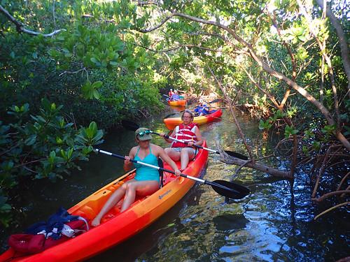 12_29_15  pm paddleboard tour Sarasota FL 06