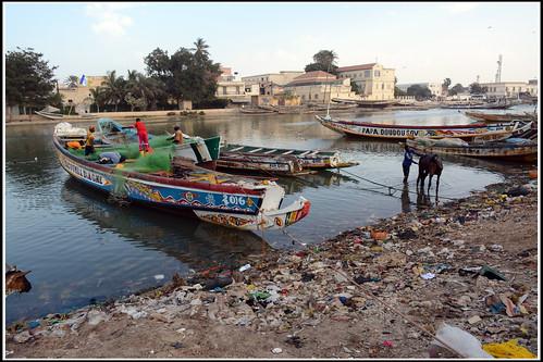 セネガル 画像37