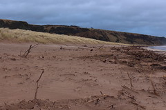 Shifting Sands,Sands of St Cyrus,St Cyrus National Nature Reserve_jan 16_678 (Alan Longmuir.) Tags: aberdeenshire grampian blowingsand stcyrus shiftingsands sandsofstcyrus stcyrusnationalnaturereserve