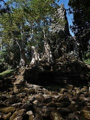 the temple of Preah Palilay (SM Tham) Tags: trees tower stone outdoors temple ruins cambodia khmer buddhist steps roots unescoworldheritagesite blocks walls angkor angkorthom preahpalilay
