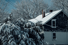 Droop (David Stebbing) Tags: snow color flickr