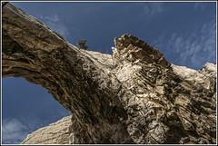 PASEANDO POR EL PARQUE GEOLÓGICO DE ALIAGA IV (Juan J. Marqués) Tags: teruel arcos nwn bonsais erosión aliaga estratos calizas geológico geoparques sinclinales anticlinales