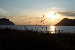 Drafjrur (vsig) Tags: iceland vestfirir island drafjrur sunset sonnenuntergang straw mountains ocean fjord islande