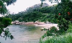ado e eva (_pixxxie) Tags: sea tree praia beach rio stone de arbol mar eva rj janeiro playa sugar corcovado e da pao aucar loaf arvore pedra gavea adao