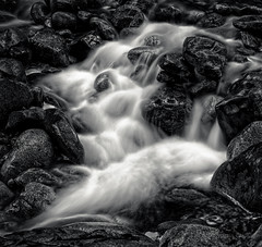Lawson Creek (martincarlisle) Tags: blackandwhite canada monochrome rocks britishcolumbia parks streams creeks westvancouver flowingwater lawsoncreek flickrelite sonycameras tamronlenses douglaswoodwardpark municipalparks