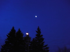 ** Ce matin-l... ** (Impatience_1 (Si site non OK...Y suis moins...)) Tags: sky moon tree night lune streetlamp m ciel fir nuit arbre sapin lampadaire impatience coth supershot saveearth