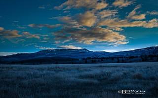 Merritt Grasslands In The Morning