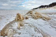 Frozen Beach Grass (mswan777) Tags: park winter sky lake snow seascape cold ice beach nature grass clouds outdoors sand nikon michigan dunes great shoreline lakes sigma grand 1020mm mere d5100